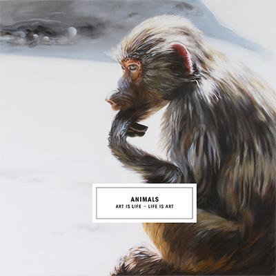 broschuere-animals-titelseite